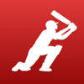 Dream11 Fantasy Cricket Game