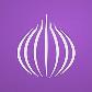Tor Browser PRO